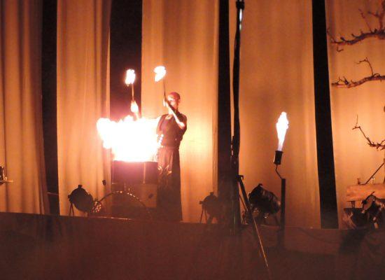 Firecircus-Laluz-Inszenierung-4Seasons-Galerie-002